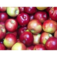 Яблоки прима 1кг