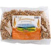 Пшеница Ваше Здоровье для проращивания 200г